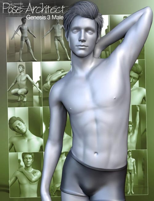 Pose Architect for Genesis 3 Male(s)