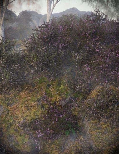 Heather - Heath and Moorland Plants for Daz Studio