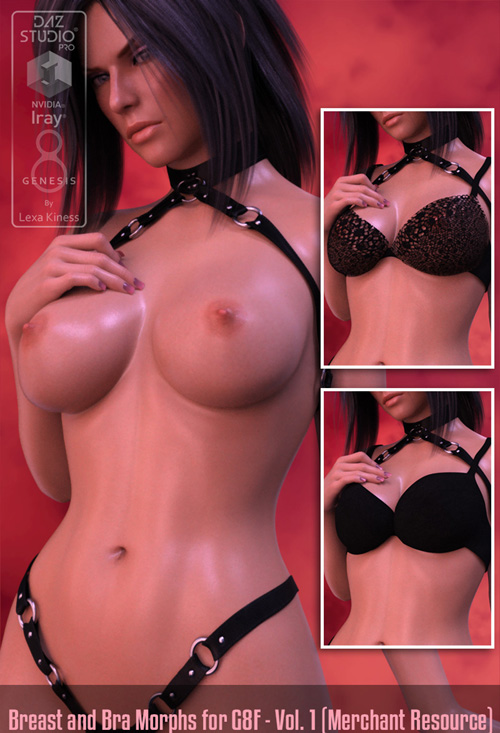 LK Breast And Bra Morphs For G8F - Vol. 1 (Merchant Resource)