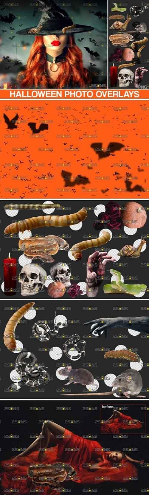 Photoshop overlay & Halloween clipart zombie hand - 839397