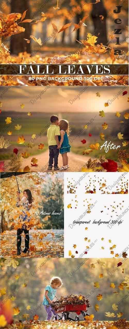 Overlays Fall Leaves - 782165