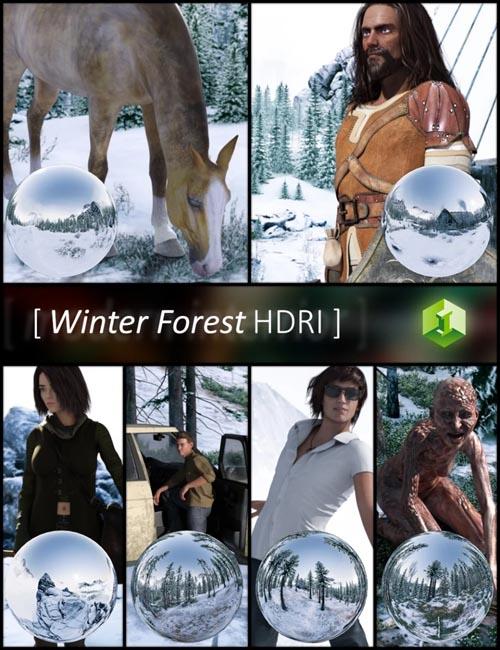 Winter Forest HDRI