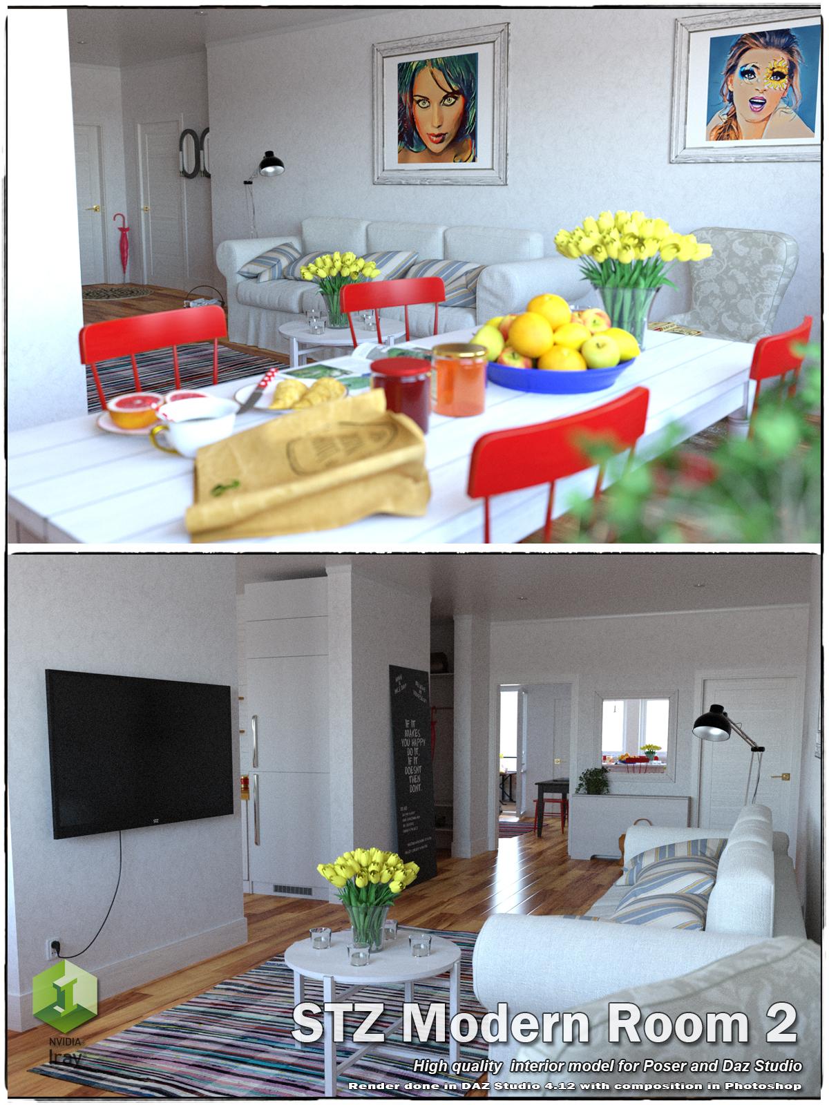 STZ Modern room 2