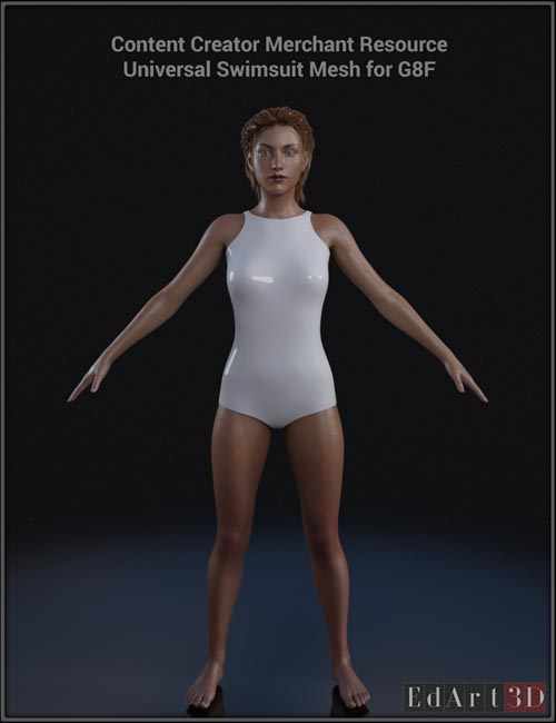 Universal Swimsuit Mesh for G8F - Content Creator MR