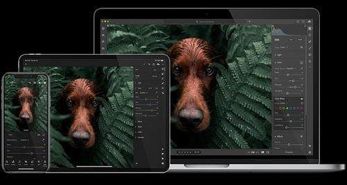 Adobe Photoshop Lightroom 4.3 Win x64