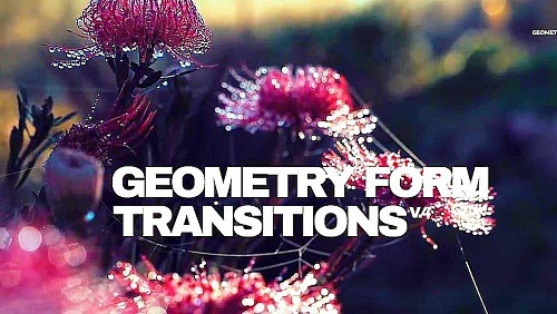 Geometry Form Transitions V.4 89 - Project for After Effects