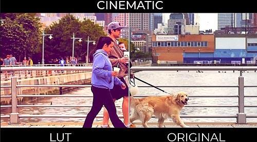 Cinematic LUTs 148603 - Premiere Pro Presets