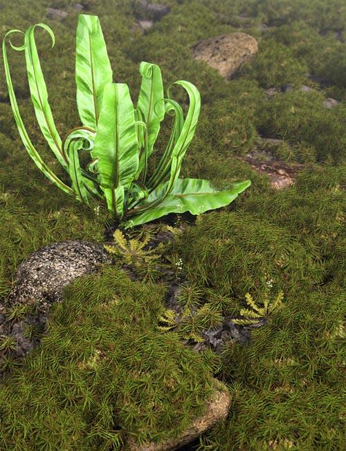 Tiny Plants vol 2 - Moss