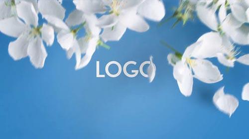 Videohive - Spring Flowers Opener 2 in 1 - 32064352