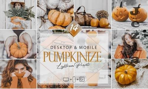 14 Pumpkinize Lightroom Presets, Autumn Mobile Preset - 1043376596