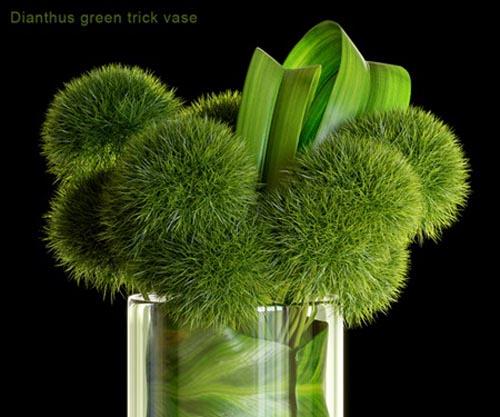 Dianthus green trick vase