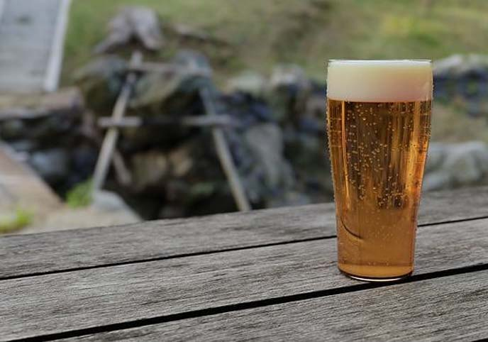 Beer Glass Realistic