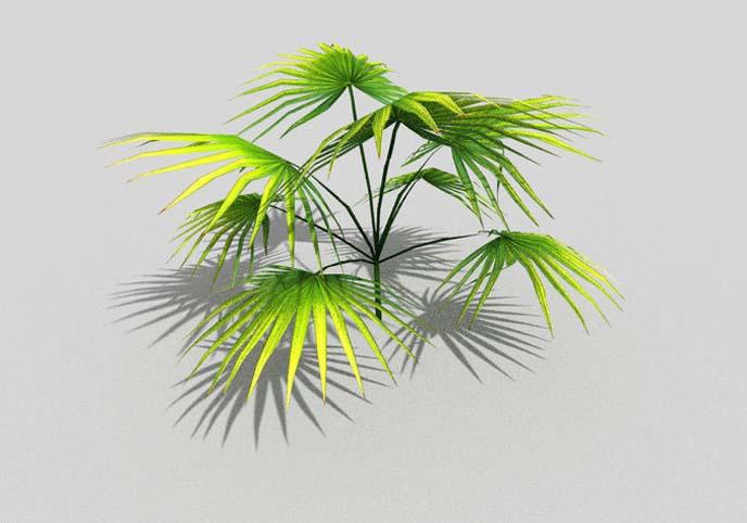 Low poly tropical foliage