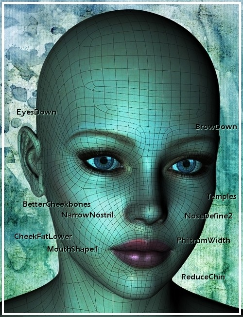 Genesis Head Morph Resource Kit 1