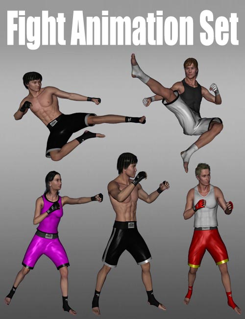 Fight Animation Set
