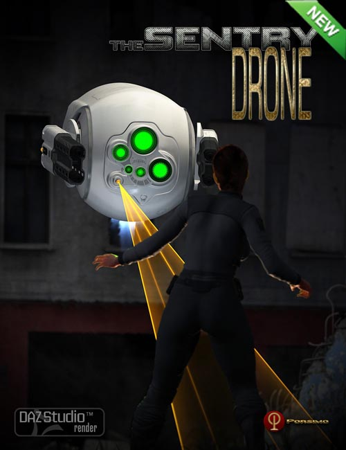 The Sentry Drone