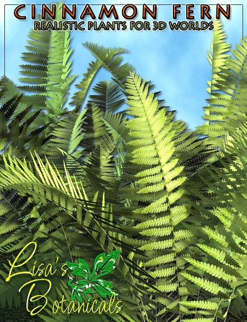 Lisa's Botanicals - Cinnamon Fern