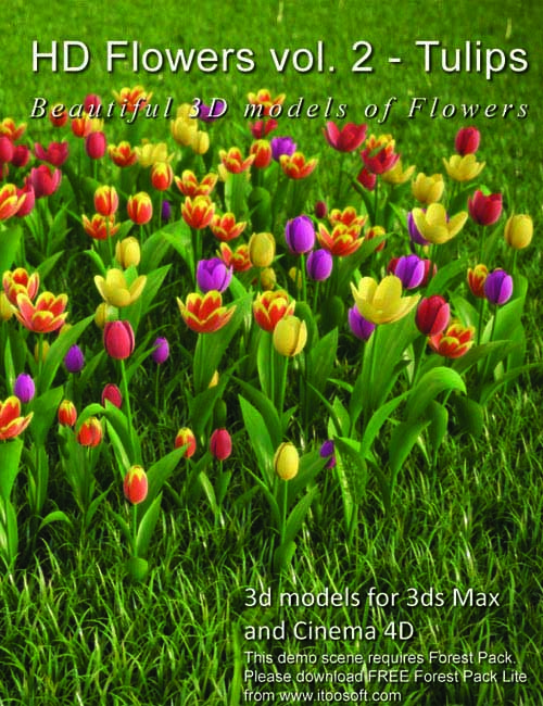 3DMentor: HD Flowers vol. 2 - Tulips