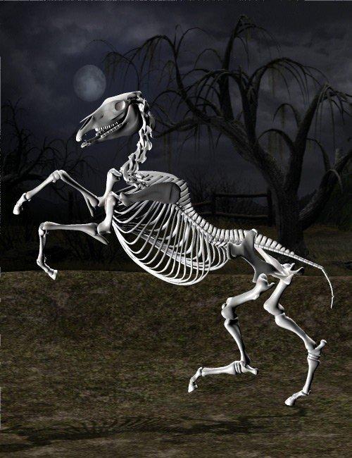 Skeleton Horse Poses
