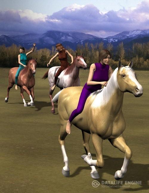 Victoria 4 Equestrian