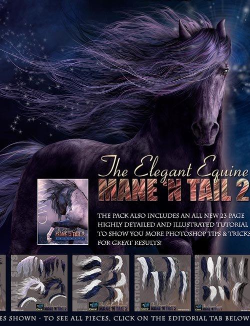 CWRW The Elegant Equine Mane 'N Tail Pack 2