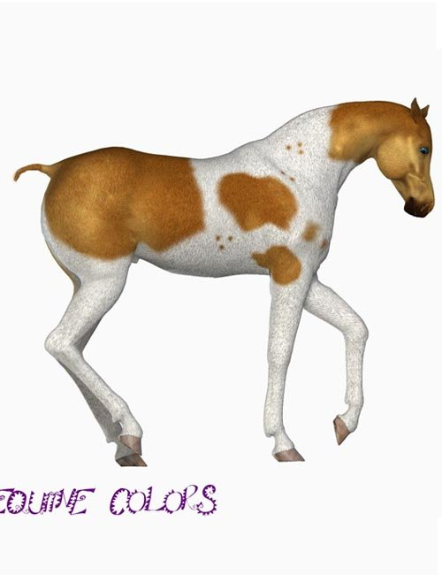 Equine Colors for the Mil Horse