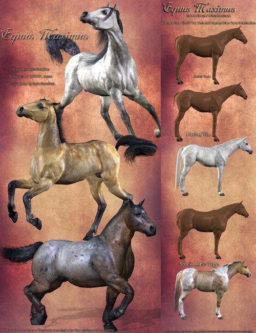 Equus Maximus