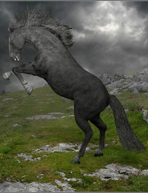 adHorse: A new horse figure for Poser