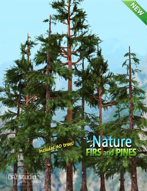 Nature - Firs and Pines