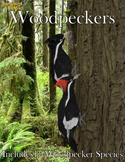 Songbird ReMix Woodpeckers