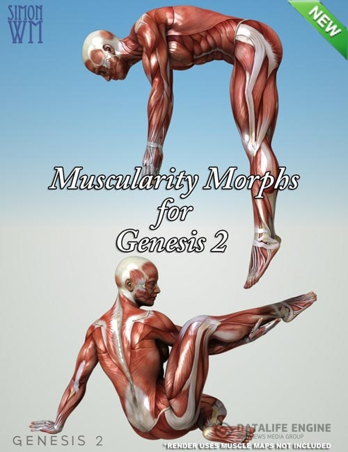 Muscularity Morphs for Genesis 2 Bundle