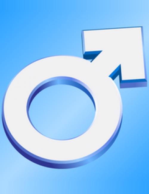 Genesis 2 Male Genitalia