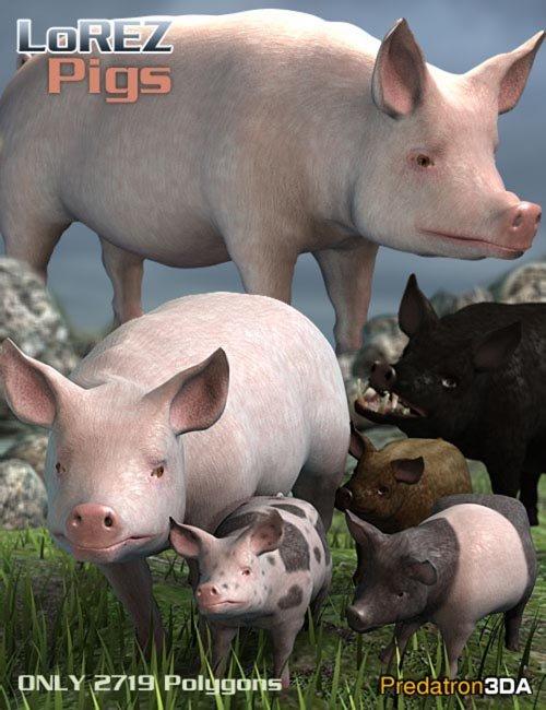 LoREZ Pigs