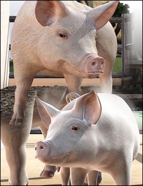 DAZ Pigs