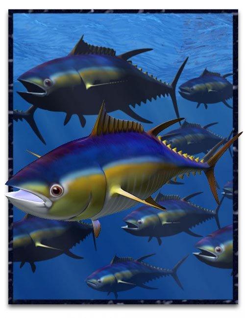 Tuna Fish [ .DUF & Iray UPDATE ]