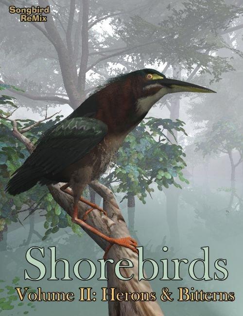 SBRM Shorebirds - Herons