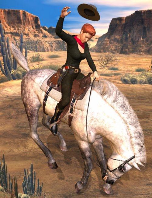 Western Rider Action