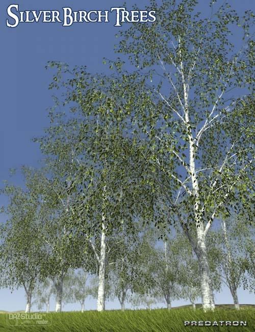Predatron Silver Birch Trees